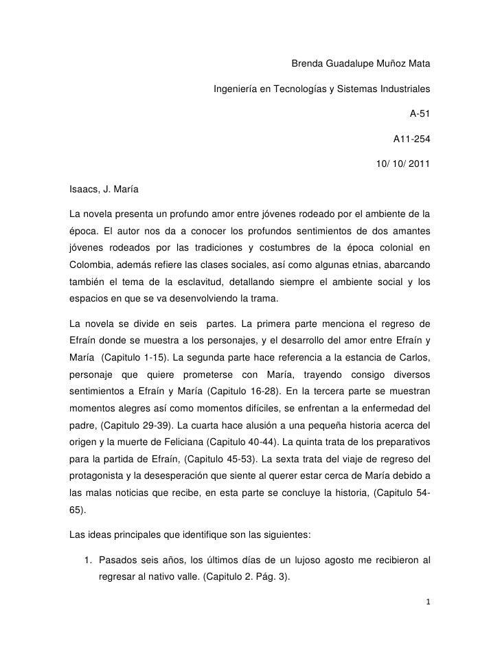Resumen Novela Maria