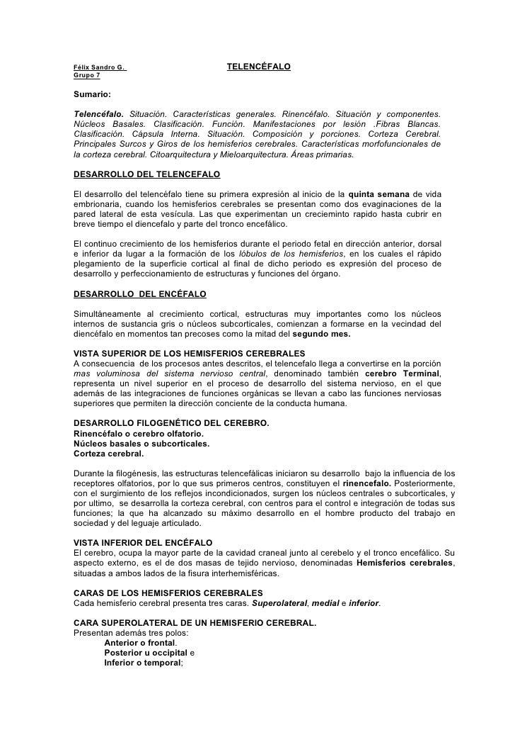 Félix Sandro G.                          TELENCÉFALO Grupo 7  Sumario:  Telencéfalo. Situación. Características generales....