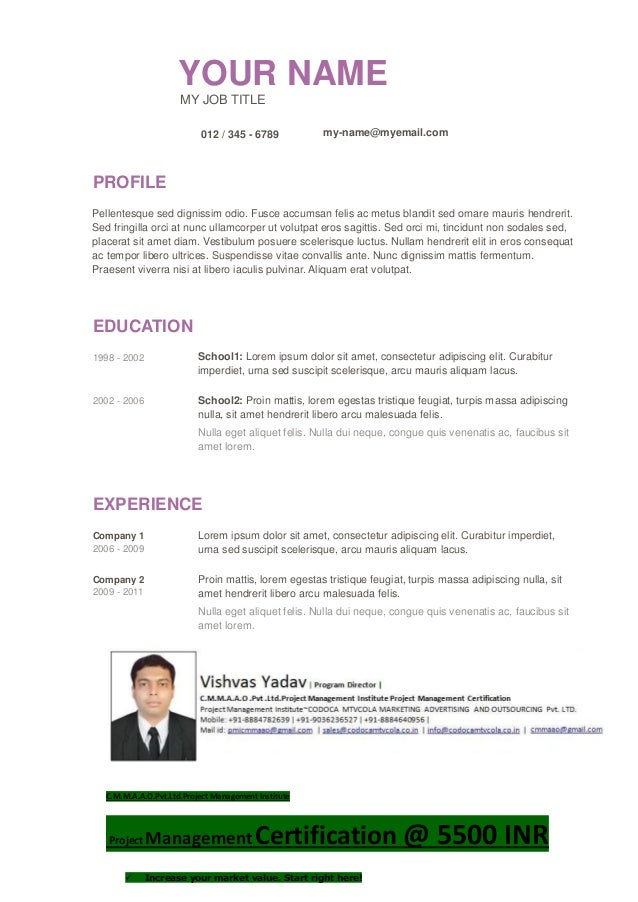 YOUR NAME MY JOB TITLE 012 / 345 - 6789 my-name@myemail.com PROFILE Pellentesque sed dignissim odio. Fusce accumsan felis ...