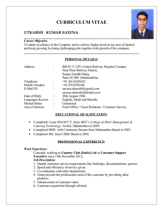 sample executive resume