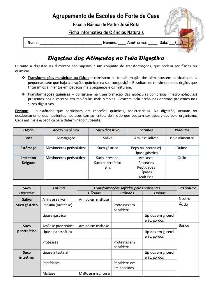 Agrupamento de Escolas do Forte da Casa                                      Escola Básica de Padre José Rota             ...