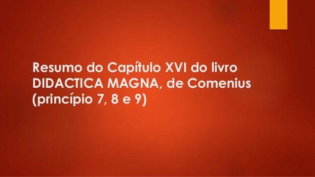 Resumo do Capítulo XVI do livro DIDACTICA MAGNA, de Comenius (princípio 7, 8 e 9)