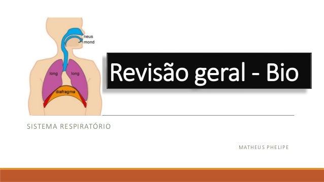 Revisão geral - Bio SISTEMA RESPIRATÓRIO MATHEUS PHELIPE
