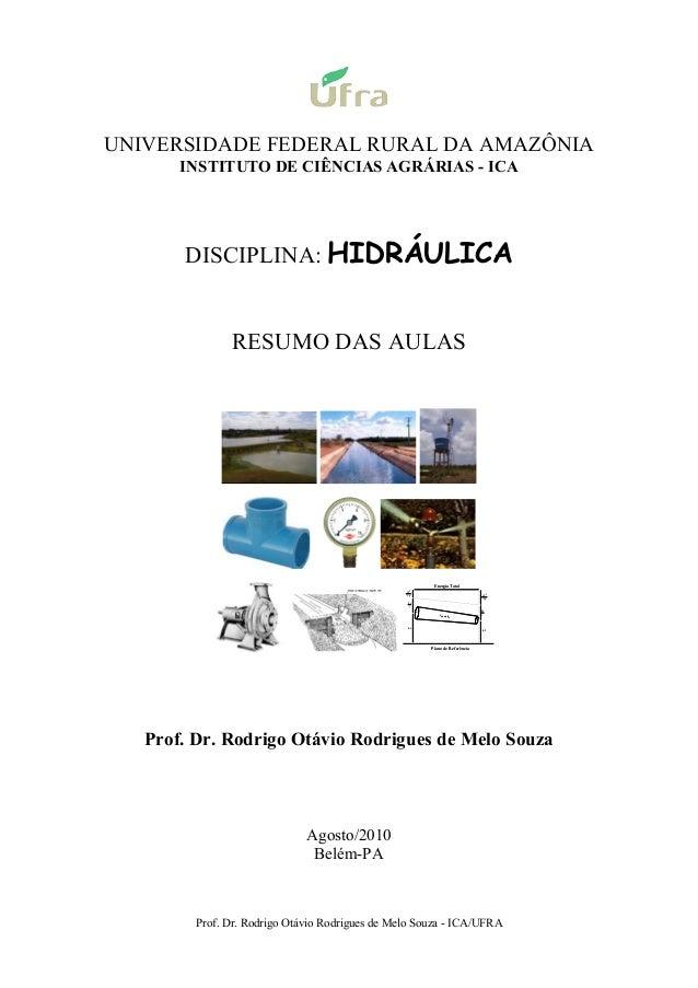 Prof. Dr. Rodrigo Otávio Rodrigues de Melo Souza - ICA/UFRA UNIVERSIDADE FEDERAL RURAL DA AMAZÔNIA INSTITUTO DE CIÊNCIAS A...