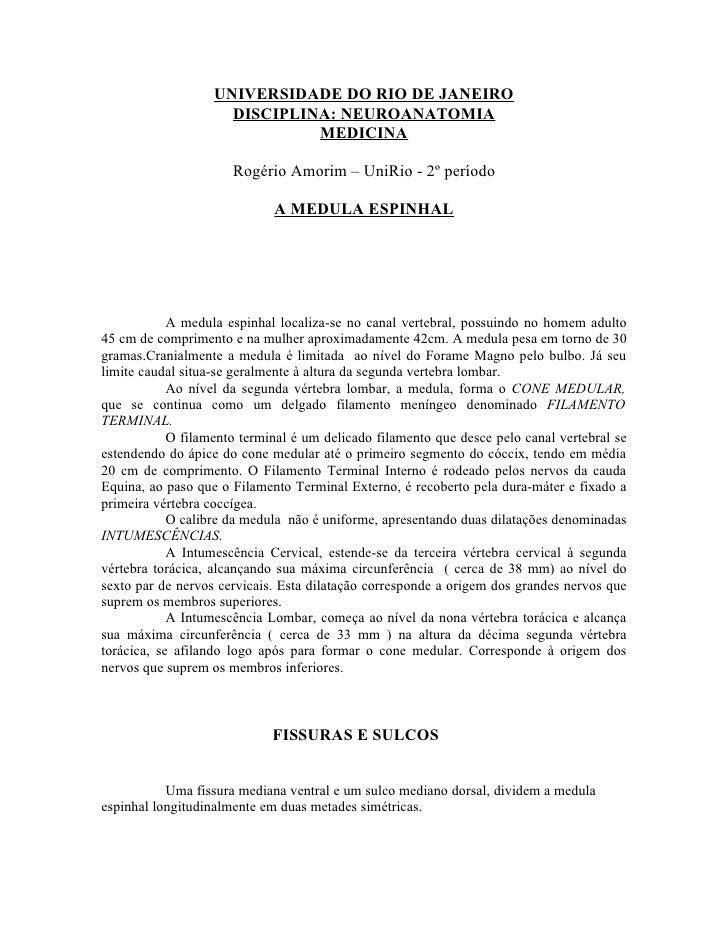 UNIVERSIDADE DO RIO DE JANEIRO                      DISCIPLINA: NEUROANATOMIA                               MEDICINA      ...