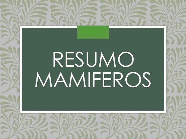RESUMO MAMIFEROS