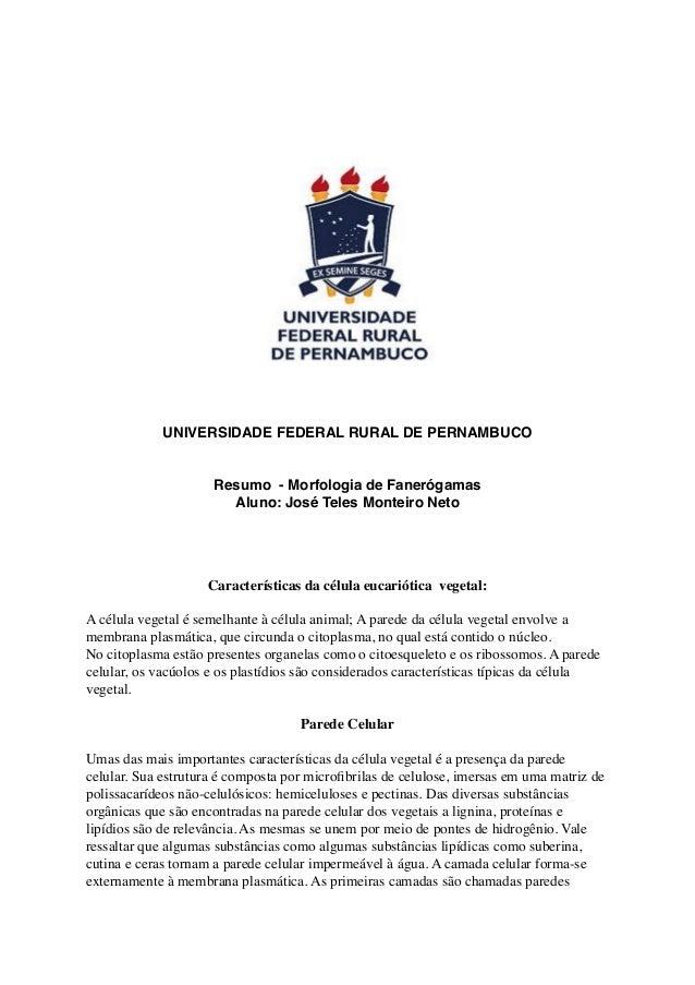 UNIVERSIDADE FEDERAL RURAL DE PERNAMBUCOResumo - Morfologia de FanerógamasAluno: José Teles Monteiro NetoCaracterísticas d...