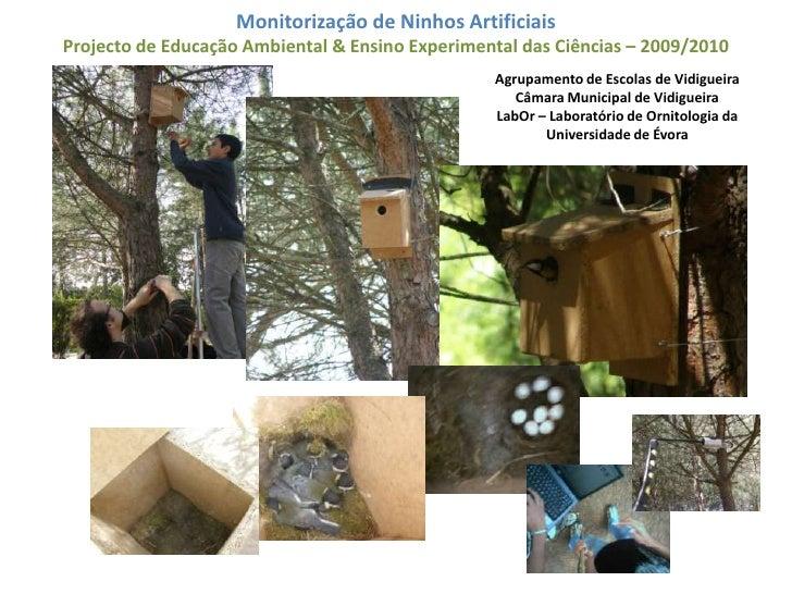 Monitorização de Ninhos Artificiais <br />Projecto de Educação Ambiental & Ensino Experimental das Ciências – 2009/2010 <b...
