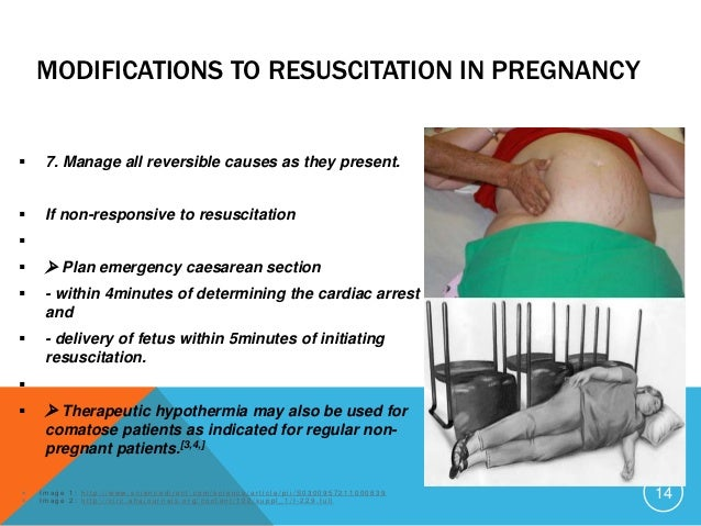 guidelines used for quantifying pregnancy