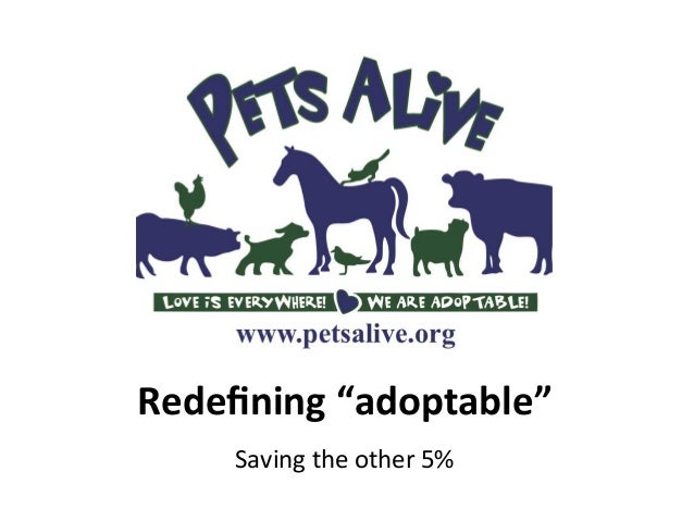 "Redefining	   ""adoptable""	   	    Saving	   the	   other	   5%"