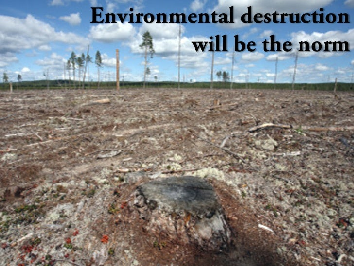 Environmental destruction         will be the norm