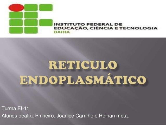 Turma:EI-11 Alunos:beatriz Pinheiro, Joanice Carrilho e Reinan mota.