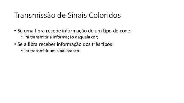 Retinose pigmentar unilateral ou pseudorretinose pigmentar? Daniela Fernandes de Carvalho Rios, Luis Felipe da Silva Alves...