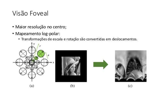 Visão Foveal • Maior resolução no centro; • Mapeamento log-polar: • Transformações de escala e rotação são convertidas em ...