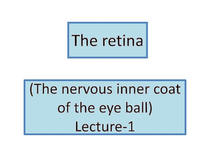 The retina<br />(The nervous inner coat of the eye ball)Lecture-1<br />