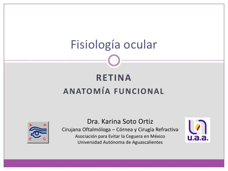 Retina<br />Anatomía funcional<br />Fisiología ocular<br />Dra. Karina Soto Ortiz<br />Cirujana Oftalmóloga – Córnea y Cir...