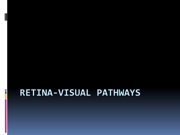RETINA-VISUAL PATHWAYS
