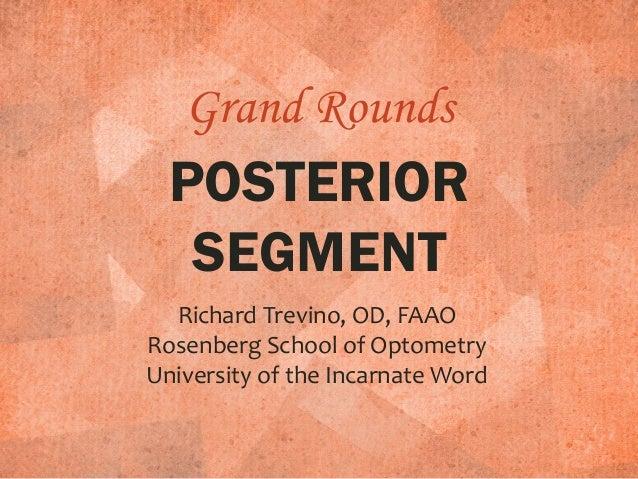 Retina Grand Rounds 2015