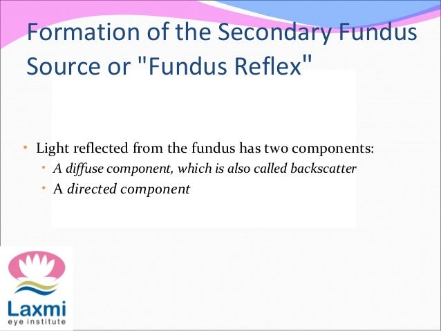"""Formation of the Secondary Fundus Source or """"Fundus Reflex"""" • Light reflected from the fundus has two components: • A diff..."""
