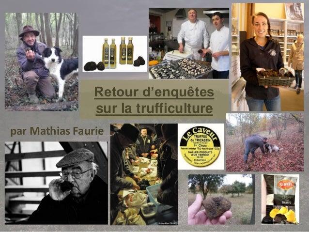 Retour d'enquêtes sur la trufficulture par Mathias Faurie