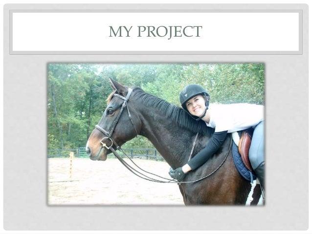 Retraining a racehorse Slide 2