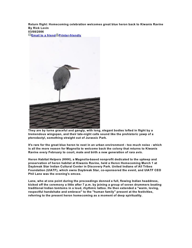 Return flight: Homecoming celebration welcomes great blue heron back to Kiwanis Ravine By Rick Levin 03/08/2006   Email to...