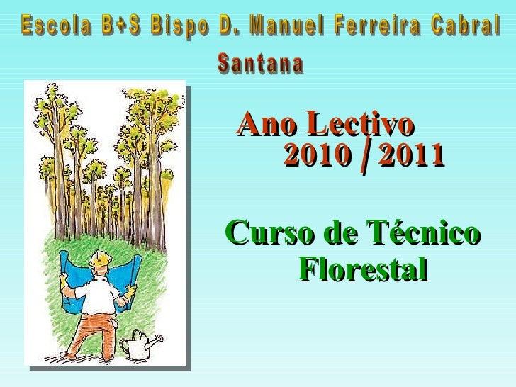 <ul><li>Ano Lectivo  2010 / 2011 </li></ul>Curso de Técnico Florestal