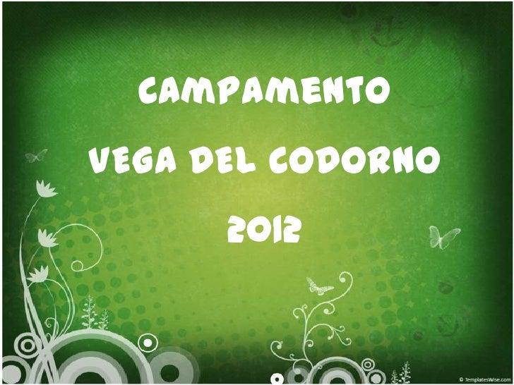CampamentoVEGA DEL CODORNO      2012