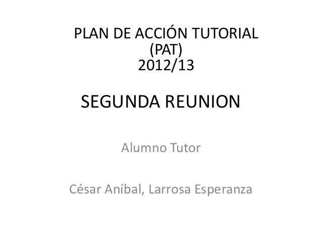 PLAN DE ACCIÓN TUTORIAL          (PAT)        2012/13 SEGUNDA REUNION        Alumno TutorCésar Aníbal, Larrosa Esperanza