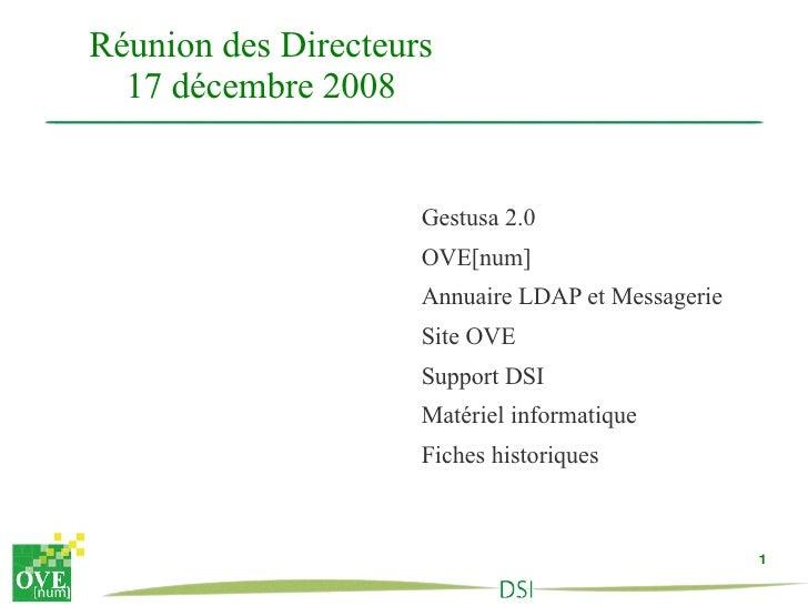 Réunion des Directeurs 17 décembre 2008 <ul><li>Gestusa 2.0