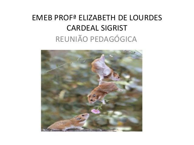 EMEB PROFª ELIZABETH DE LOURDES CARDEAL SIGRIST REUNIÃO PEDAGÓGICA