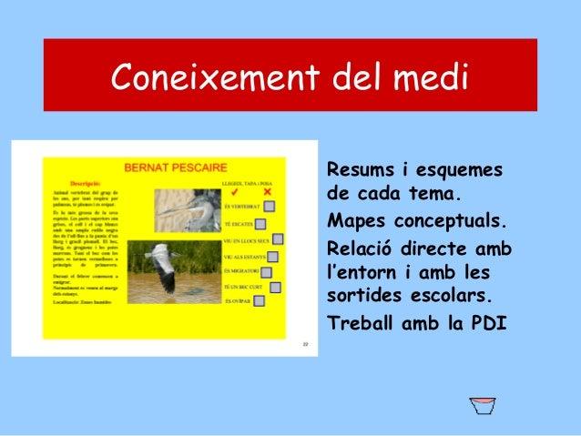 Coneixement del medi • Resums i esquemes de cada tema. • Mapes conceptuals. • Relació directe amb l'entorn i amb les sorti...