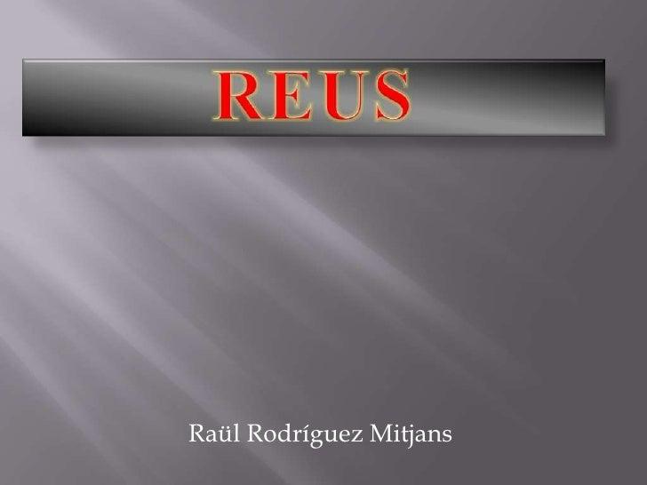 Raül Rodríguez Mitjans