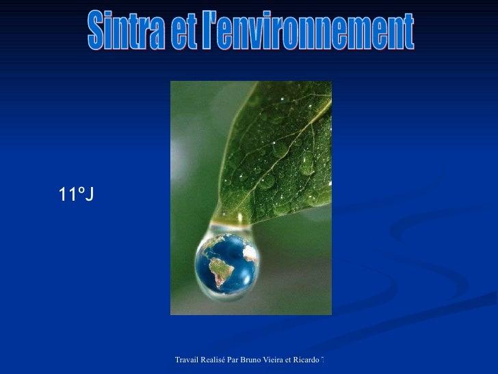 Sintra et l'environnement 11ºJ