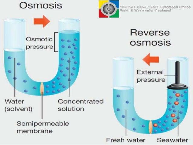Reverse Osmosis Desalination Water Treatment