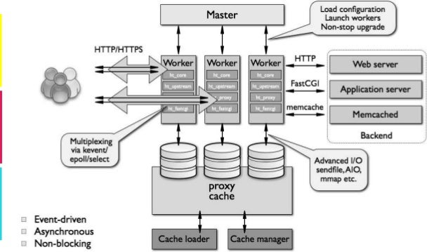 Reverse proxy & web cache with NGINX, HAProxy and Varnish