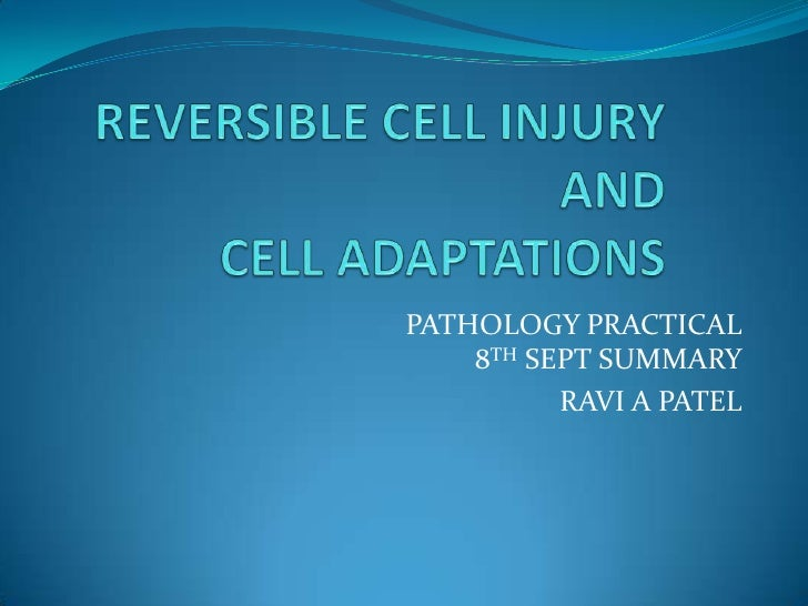 REVERSIBLE CELL INJURY AND CELL ADAPTATIONS<br />PATHOLOGY PRACTICAL8TH SEPT SUMMARY<br />RAVI A PATEL<br />