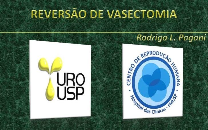 REVERSÃO DE VASECTOMIA<br />Rodrigo L. Pagani<br />