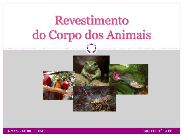 Diversidade nos animais Docente: Tânia Reis Revestimento do Corpo dos Animais