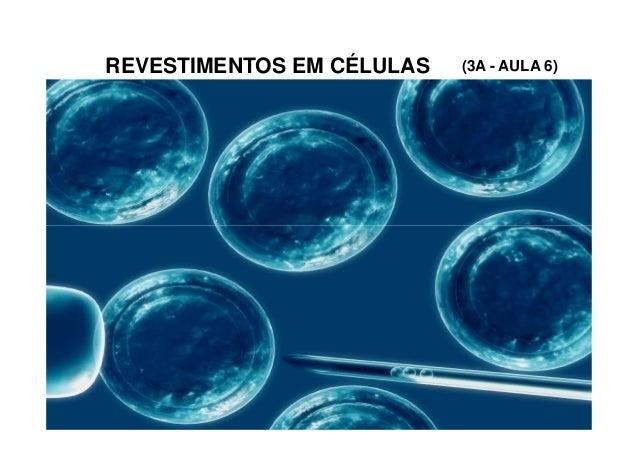 REVESTIMENTOS EM CÉLULAS (3A - AULA 6)