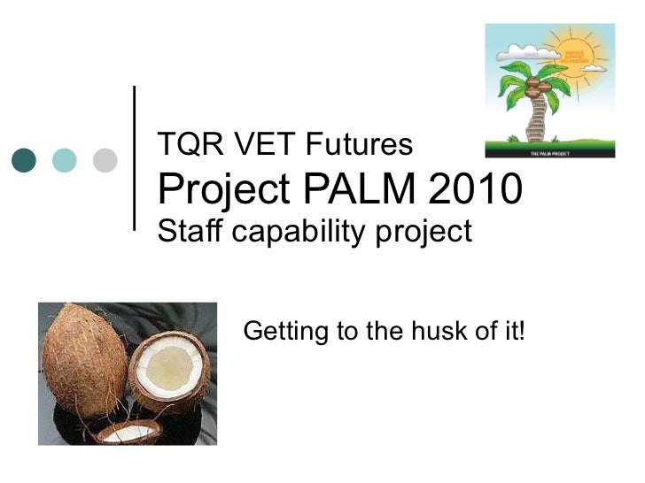 TQR VET Futures   Project PALM 2010 Staff capability project Getting to the husk of it!