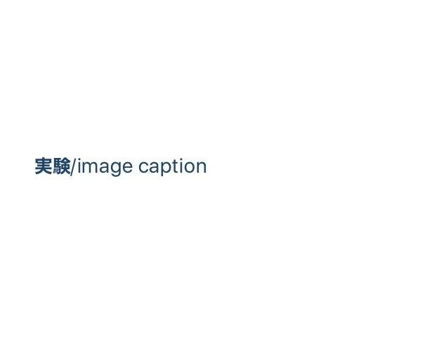 実験/image caption