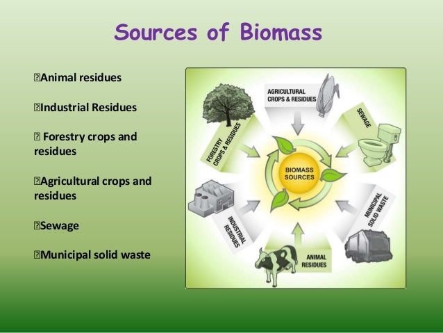 Review Of Biomass Energy Sources