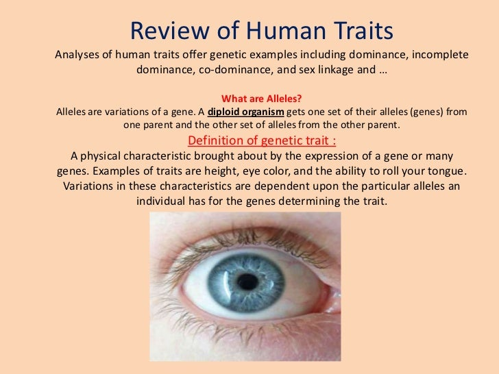 Review Of Human Traits