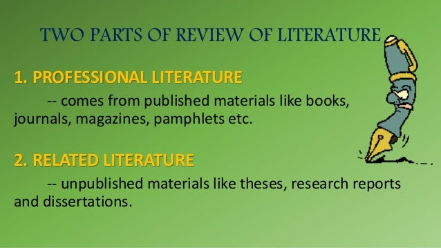 pay for professional literature review online