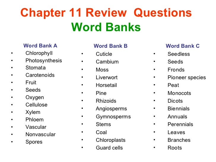chapter 11 questions to be graded Invisible man chapter 11 questions and answers ralph ellison homework help  chapter 11 questions and answers  next: chapter 12 questions a previous: chapter 10 questions a.