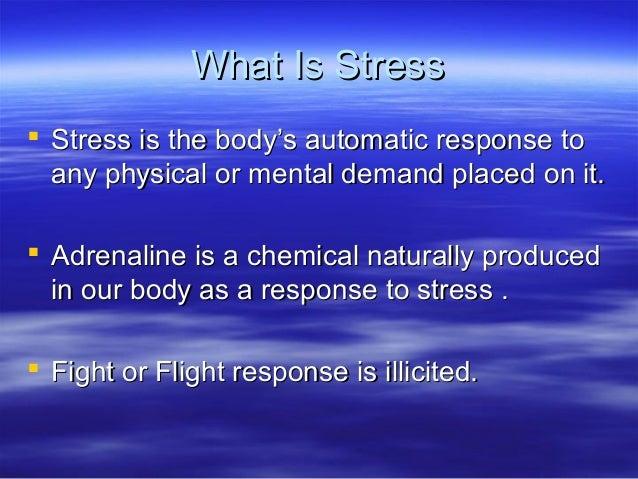 negative effects of stress pdf