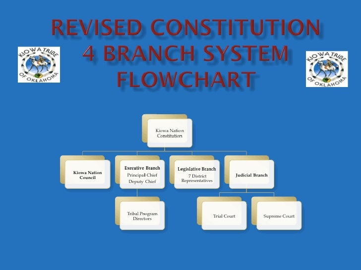 Revised Constitution Flowchart
