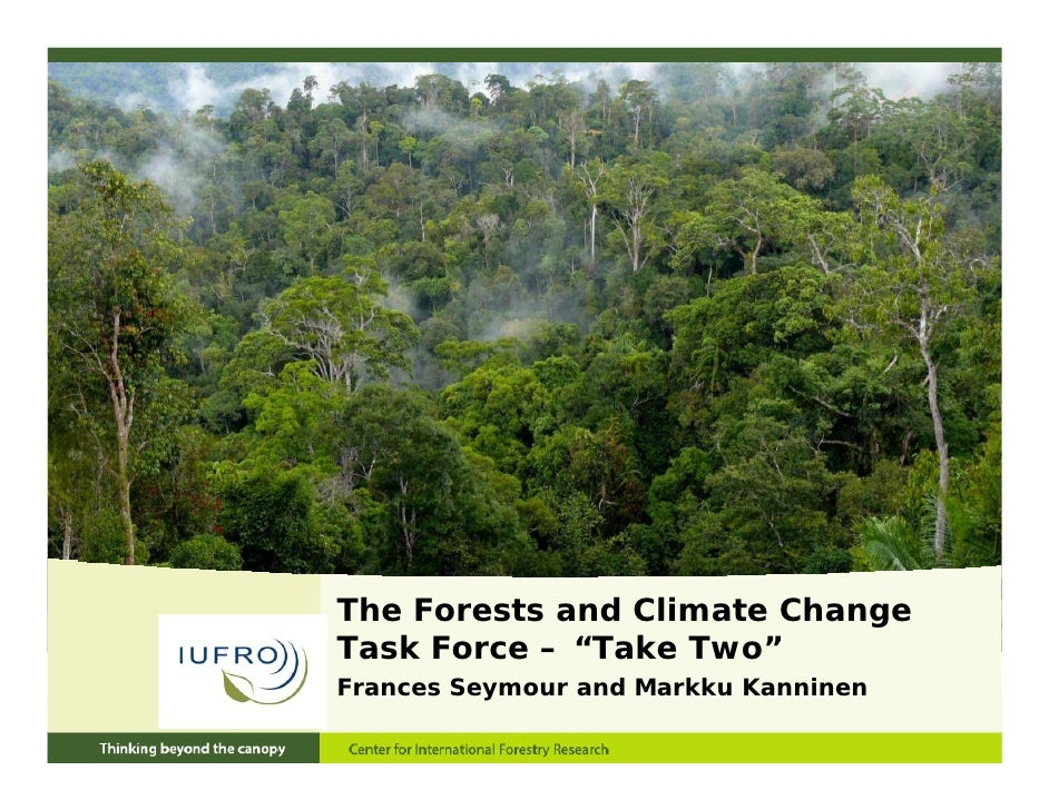 """The Forests and Climate ChangeTask Force – """"Take Two"""" as   o ce     a e    oFrances Seymour and Markku Kanninen"""