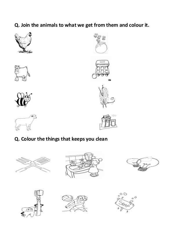 Revision sheet grade kg2 – Day and Night Worksheets